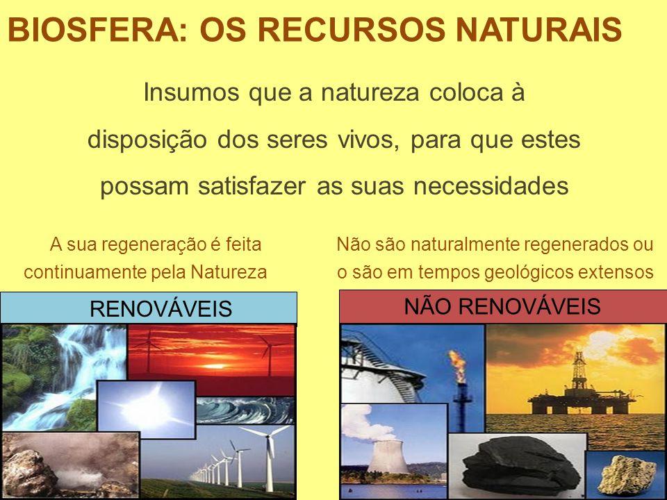 BIOSFERA: OS RECURSOS NATURAIS Insumos que a natureza coloca à disposição dos seres vivos, para que estes possam satisfazer as suas necessidades RENOV