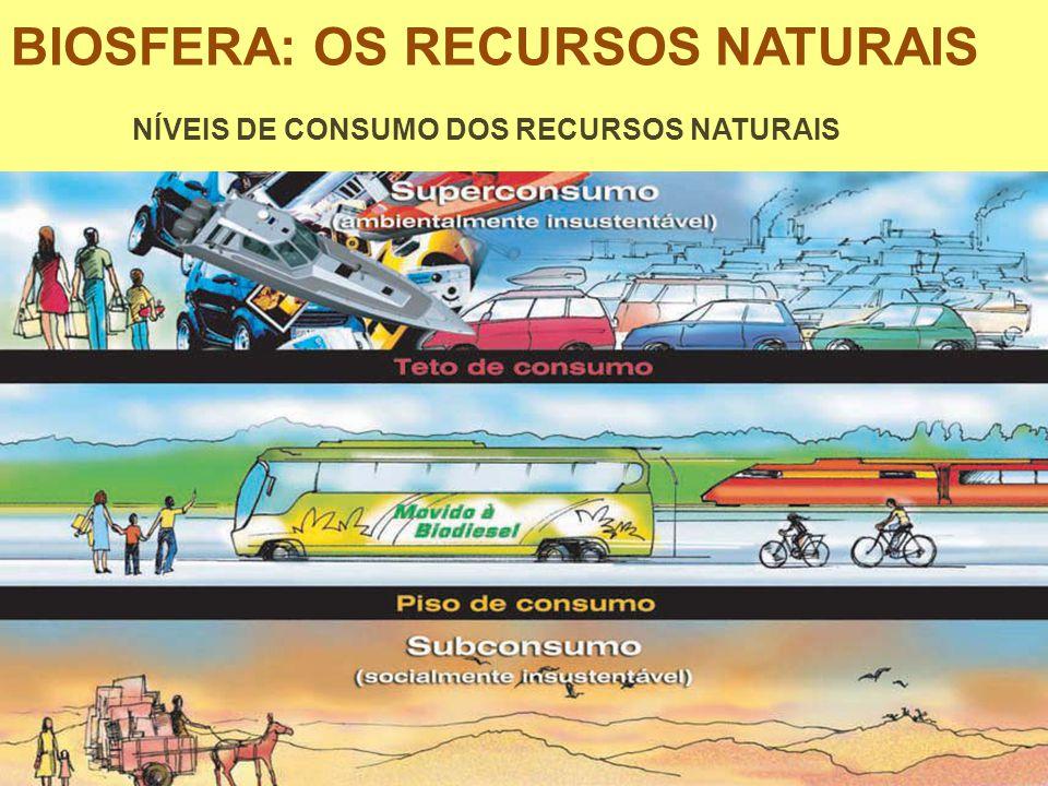 BIOSFERA: OS RECURSOS NATURAIS NÍVEIS DE CONSUMO DOS RECURSOS NATURAIS