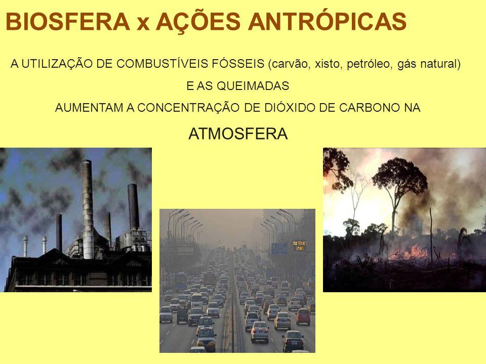 BIOSFERA x AÇÕES ANTRÓPICAS A UTILIZAÇÃO DE COMBUSTÍVEIS FÓSSEIS (carvão, xisto, petróleo, gás natural) E AS QUEIMADAS AUMENTAM A CONCENTRAÇÃO DE DIÓX