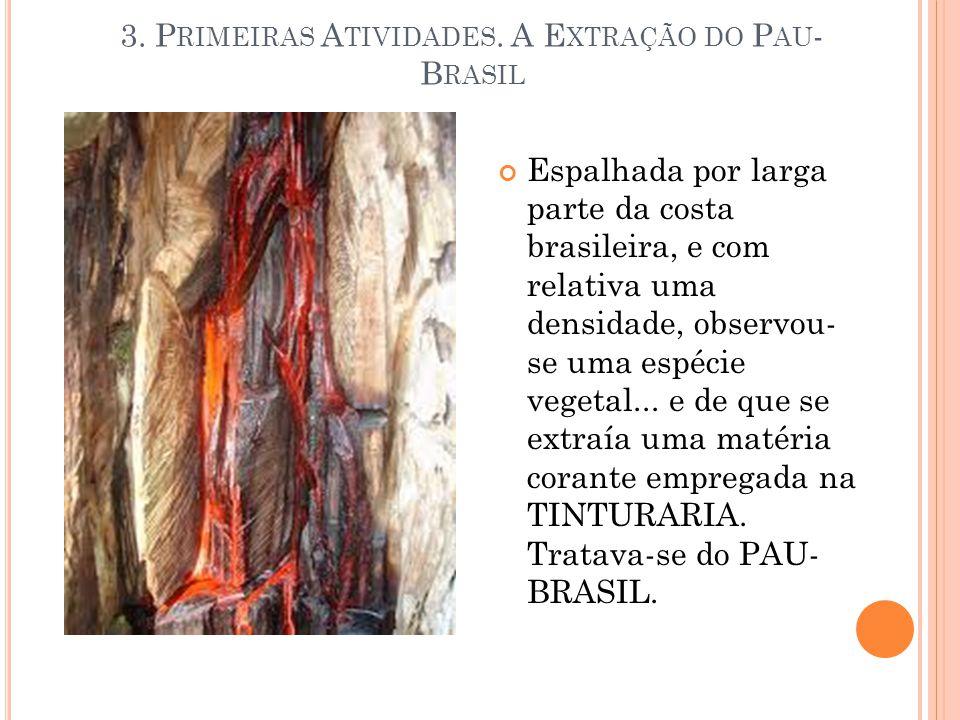 Espalhada por larga parte da costa brasileira, e com relativa uma densidade, observou- se uma espécie vegetal... e de que se extraía uma matéria coran