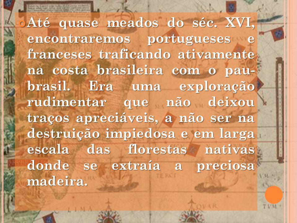 Até quase meados do séc. XVI, encontraremos portugueses e franceses traficando ativamente na costa brasileira com o pau- brasil. Era uma exploração ru