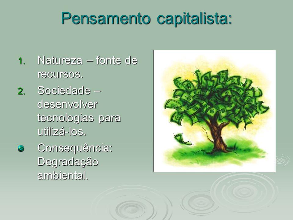 Pensamento capitalista: 1. Natureza – fonte de recursos. 2. Sociedade – desenvolver tecnologias para utilizá-los. Consequência: Degradação ambiental.