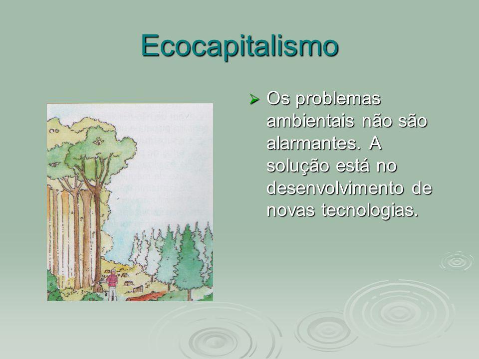 Ecocapitalismo Os problemas ambientais não são alarmantes. A solução está no desenvolvimento de novas tecnologias. Os problemas ambientais não são ala