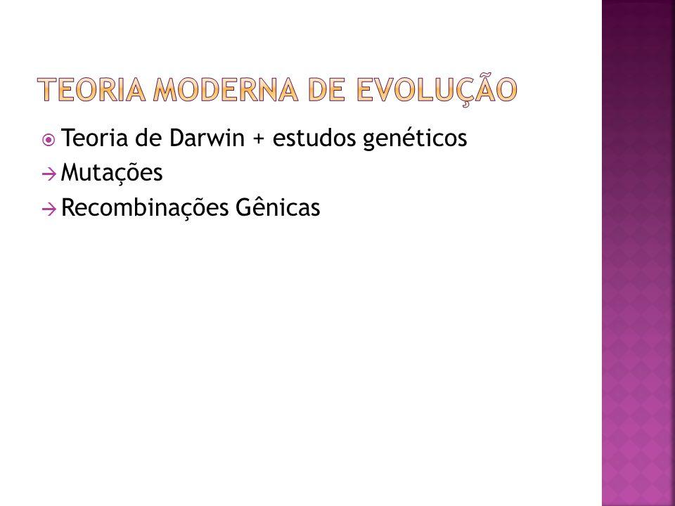 Teoria de Darwin + estudos genéticos Mutações Recombinações Gênicas
