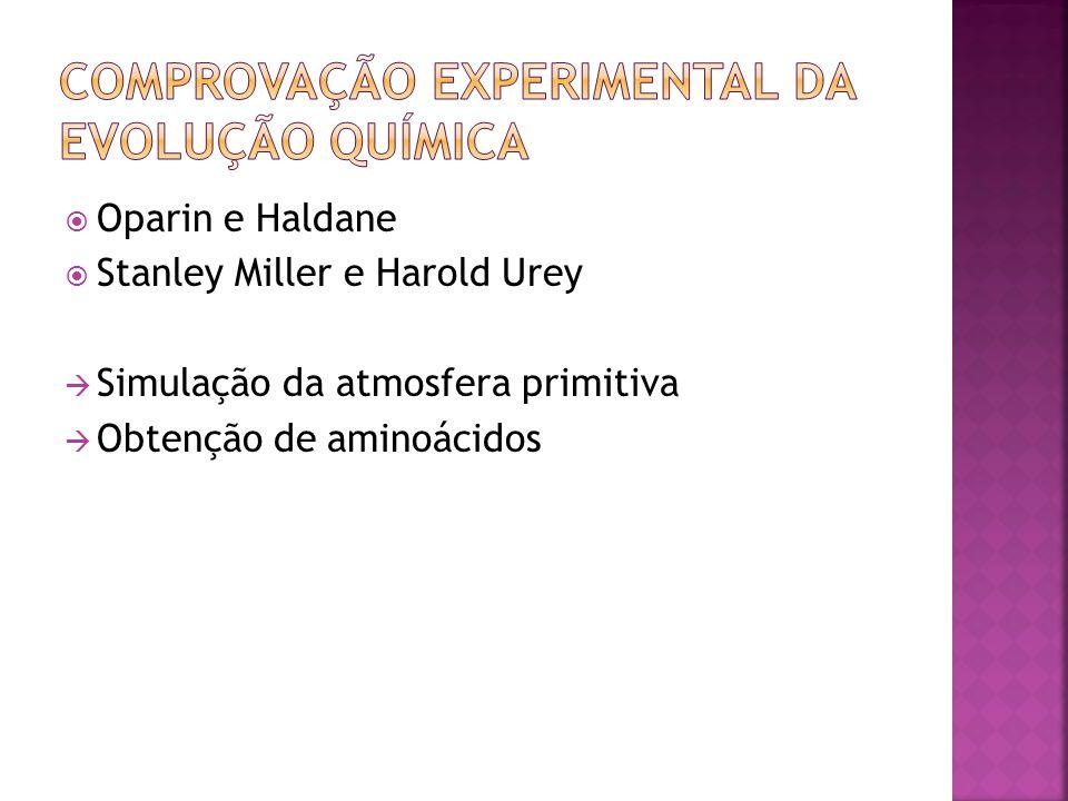 Oparin e Haldane Stanley Miller e Harold Urey Simulação da atmosfera primitiva Obtenção de aminoácidos