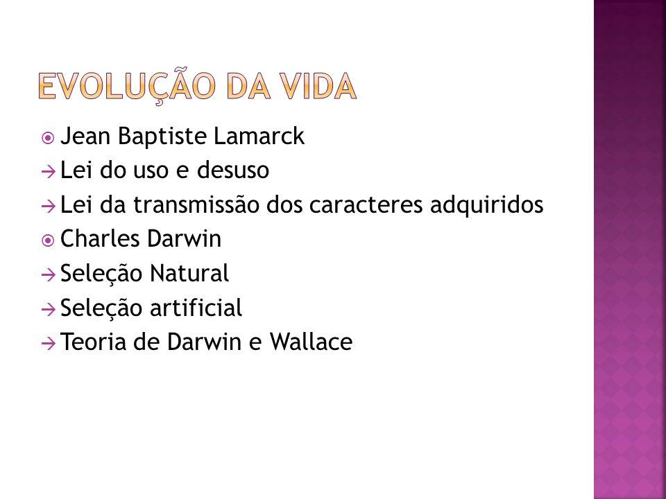 Jean Baptiste Lamarck Lei do uso e desuso Lei da transmissão dos caracteres adquiridos Charles Darwin Seleção Natural Seleção artificial Teoria de Darwin e Wallace