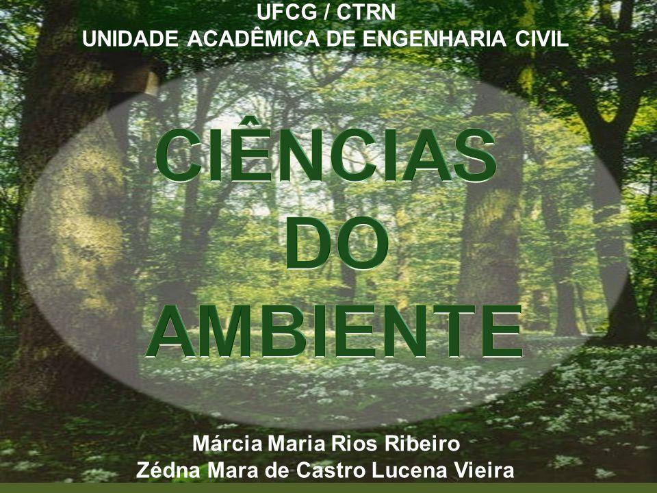 UFCG / CTRN UNIDADE ACADÊMICA DE ENGENHARIA CIVIL Márcia Maria Rios Ribeiro Zédna Mara de Castro Lucena Vieira