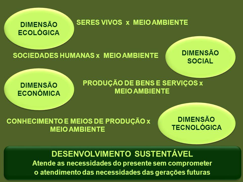 DIMENSÃO ECOLÓGICA DIMENSÃO ECOLÓGICA SERES VIVOS x MEIO AMBIENTE DIMENSÃO SOCIAL DIMENSÃO SOCIAL SOCIEDADES HUMANAS x MEIO AMBIENTE DIMENSÃO ECONÔMIC