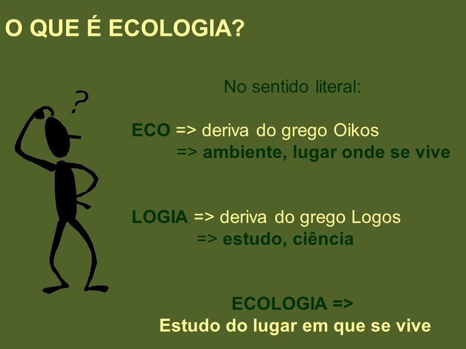 O QUE É ECOLOGIA? No sentido literal: ECO => deriva do grego Oikos => ambiente, lugar onde se vive LOGIA => deriva do grego Logos => estudo, ciência E