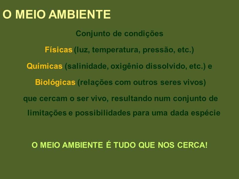O MEIO AMBIENTE Conjunto de condições Físicas (luz, temperatura, pressão, etc.) Químicas (salinidade, oxigênio dissolvido, etc.) e Biológicas (relaçõe