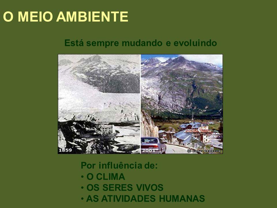 Está sempre mudando e evoluindo O MEIO AMBIENTE Por influência de: O CLIMA OS SERES VIVOS AS ATIVIDADES HUMANAS