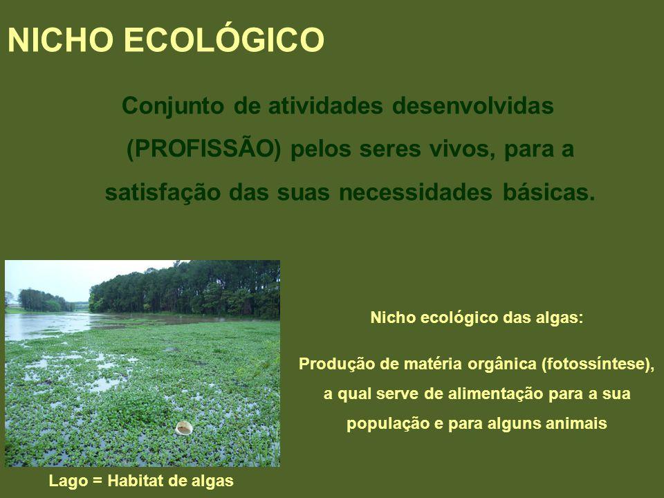 Conjunto de atividades desenvolvidas (PROFISSÃO) pelos seres vivos, para a satisfação das suas necessidades básicas. NICHO ECOLÓGICO Lago = Habitat de