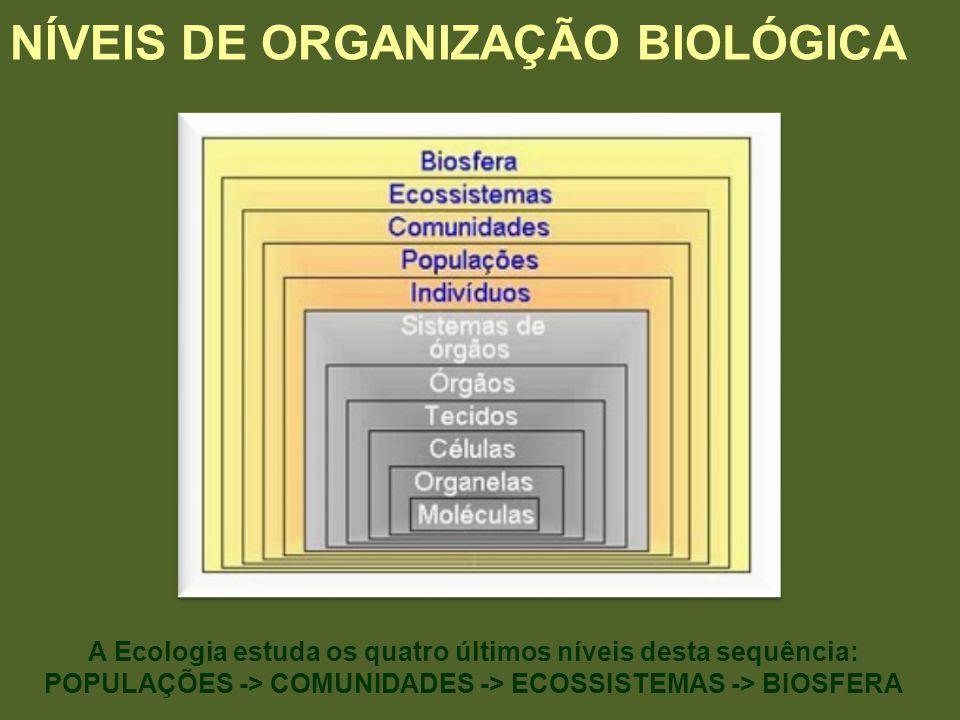 NÍVEIS DE ORGANIZAÇÃO BIOLÓGICA A Ecologia estuda os quatro últimos níveis desta sequência: POPULAÇÕES -> COMUNIDADES -> ECOSSISTEMAS -> BIOSFERA