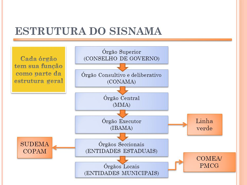 ESTRUTURA DO SISNAMA Órgão Superior (CONSELHO DE GOVERNO) Órgão Superior (CONSELHO DE GOVERNO) Órgão Consultivo e deliberativo (CONAMA) Órgão Consulti