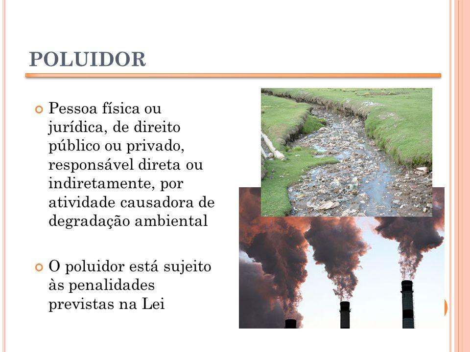 POLUIDOR Pessoa física ou jurídica, de direito público ou privado, responsável direta ou indiretamente, por atividade causadora de degradação ambienta
