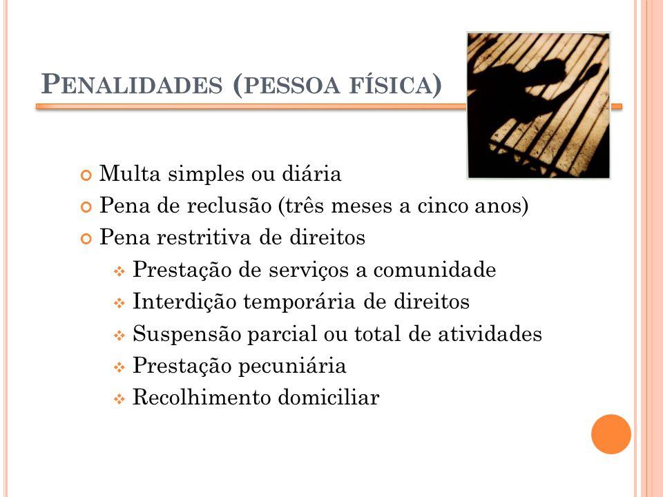 P ENALIDADES ( PESSOA FÍSICA ) Multa simples ou diária Pena de reclusão (três meses a cinco anos) Pena restritiva de direitos Prestação de serviços a