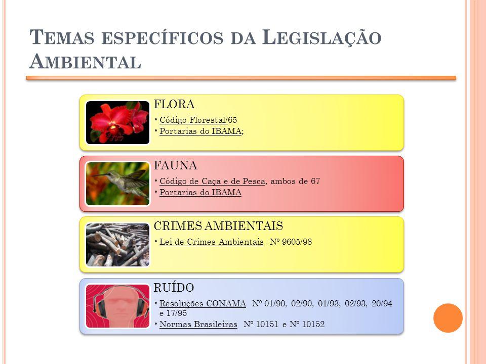 T EMAS ESPECÍFICOS DA L EGISLAÇÃO A MBIENTAL FLORA Código Florestal/65 Portarias do IBAMA; FAUNA Código de Caça e de Pesca, ambos de 67 Portarias do I