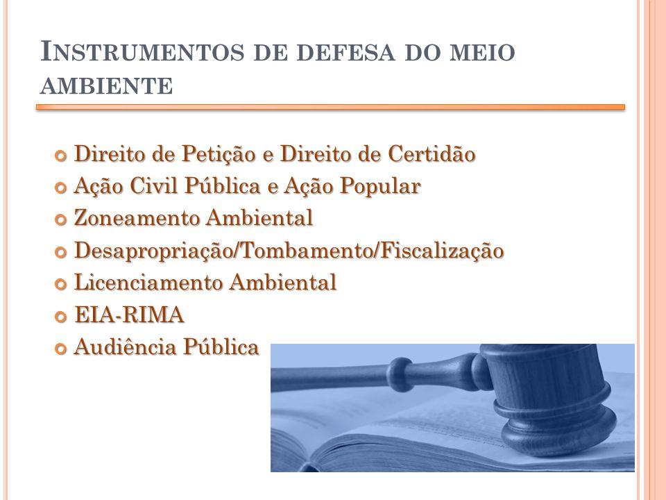 I NSTRUMENTOS DE DEFESA DO MEIO AMBIENTE Direito de Petição e Direito de Certidão Direito de Petição e Direito de Certidão Ação Civil Pública e Ação P