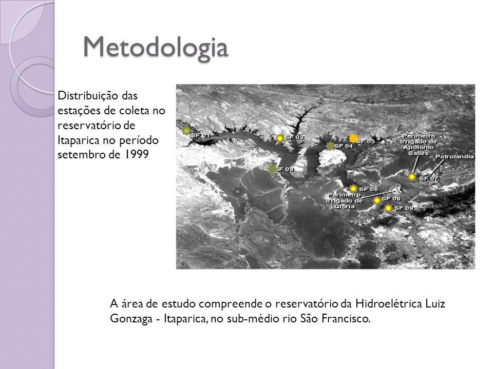 Metodologia A área de estudo compreende o reservatório da Hidroelétrica Luiz Gonzaga - Itaparica, no sub-médio rio São Francisco. Distribuição das est