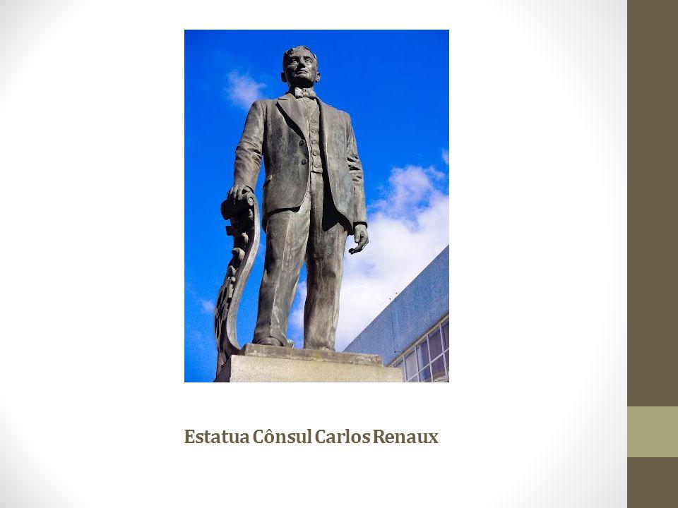 Estatua Cônsul Carlos Renaux