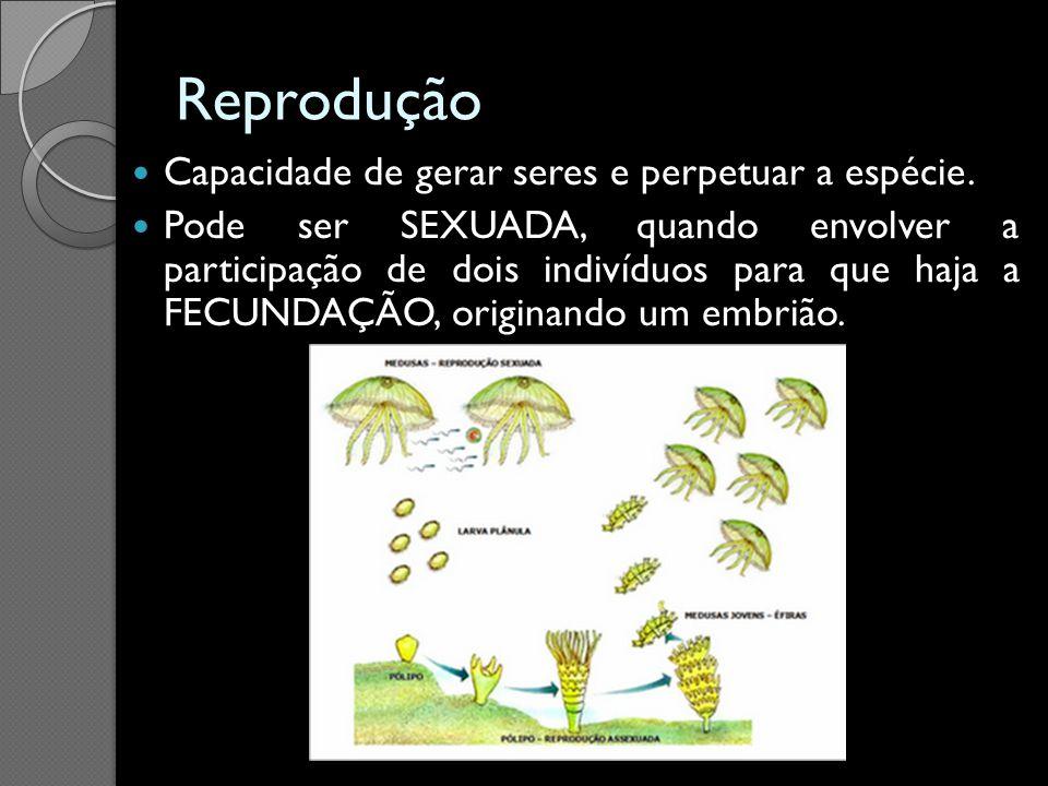 Reprodução Capacidade de gerar seres e perpetuar a espécie. Pode ser SEXUADA, quando envolver a participação de dois indivíduos para que haja a FECUND