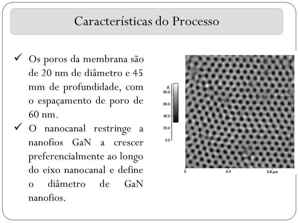 Características do Processo Os poros da membrana são de 20 nm de diâmetro e 45 mm de profundidade, com o espaçamento de poro de 60 nm. O nanocanal res