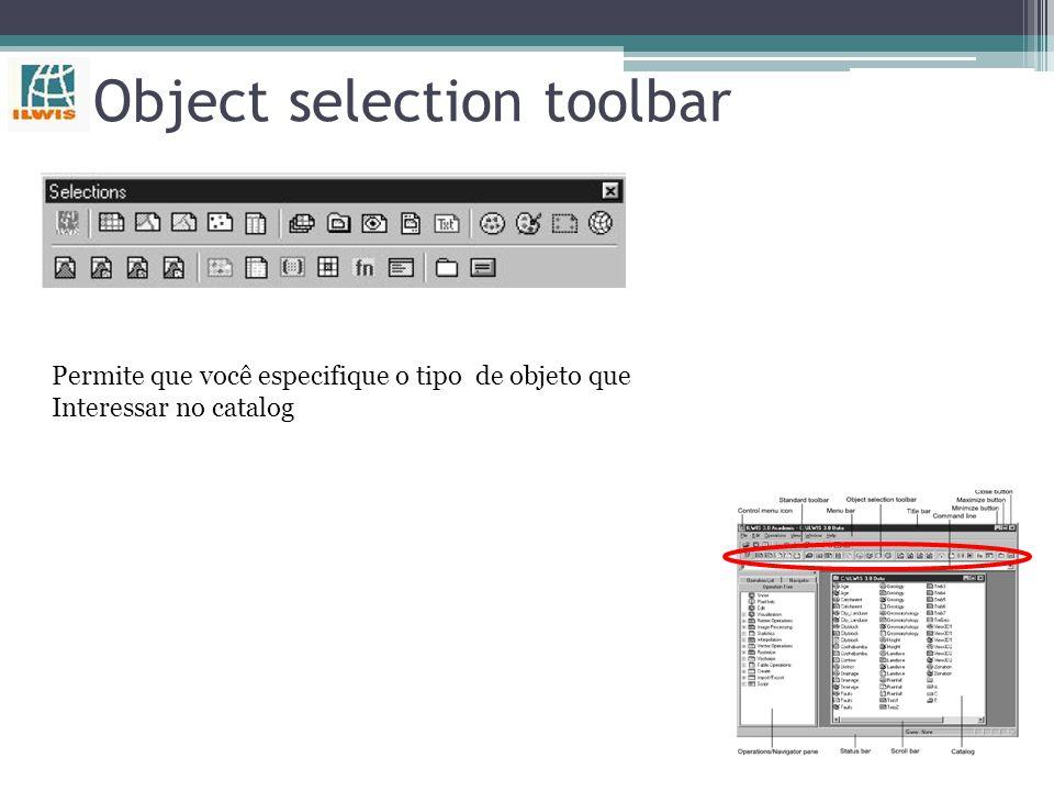 Catalog(s) Parte da janela principal, na qual mapas, tabelas e outros objetos são mostrados com o seu próprio tipo de ícone Customizing the catalog: m