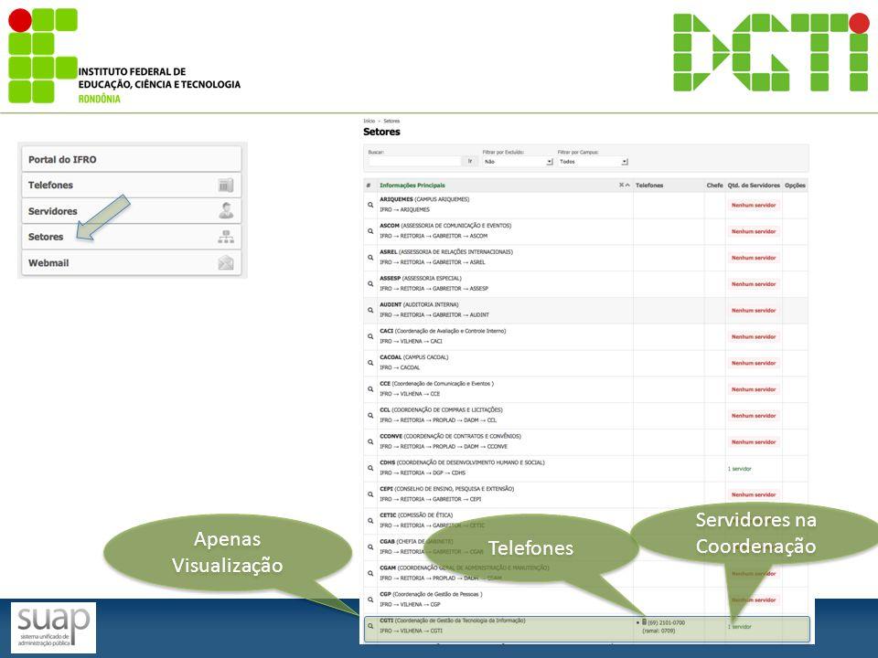Apenas Visualização Apenas Visualização Servidores na Coordenação Telefones