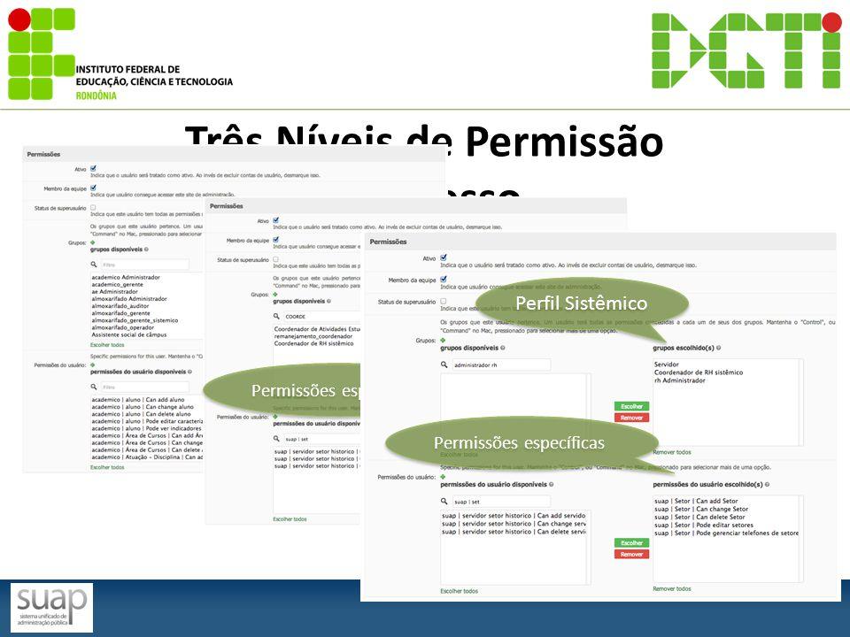 Três Níveis de Permissão de Acesso Perfil Servidor Perfil Câmpus Permissões específicas Perfil Sistêmico Permissões específicas