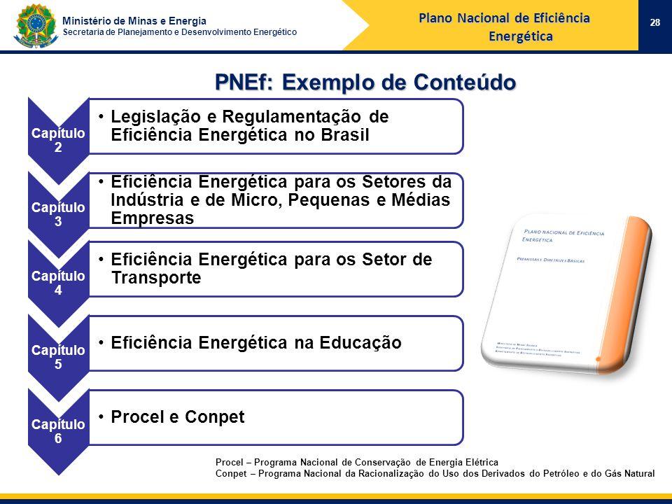 Ministério de Minas e Energia Secretaria de Planejamento e Desenvolvimento Energético PNEf: Exemplo de Conteúdo 28 Procel – Programa Nacional de Conservação de Energia Elétrica Conpet – Programa Nacional da Racionalização do Uso dos Derivados do Petróleo e do Gás Natural Plano Nacional de Eficiência Energética