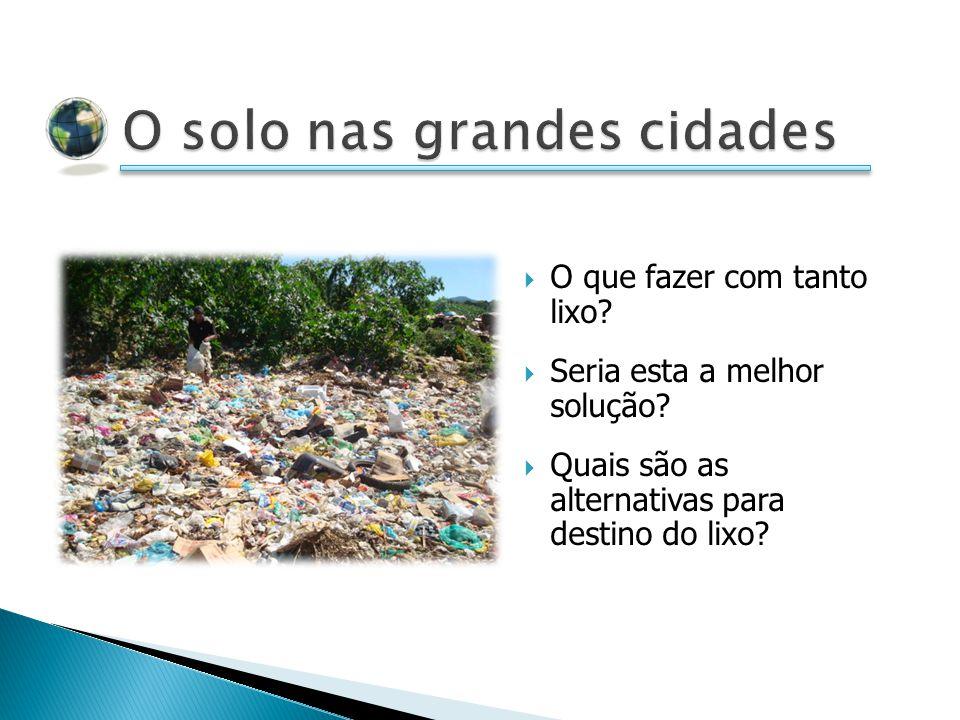 O que fazer com tanto lixo? Seria esta a melhor solução? Quais são as alternativas para destino do lixo?