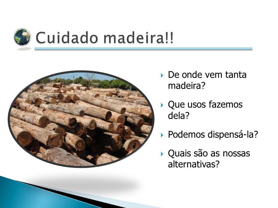 De onde vem tanta madeira? Que usos fazemos dela? Podemos dispensá-la? Quais são as nossas alternativas?