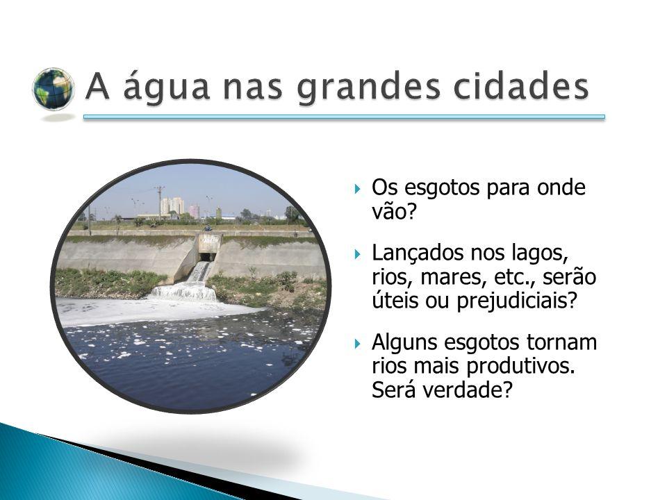 Os esgotos para onde vão.Lançados nos lagos, rios, mares, etc., serão úteis ou prejudiciais.