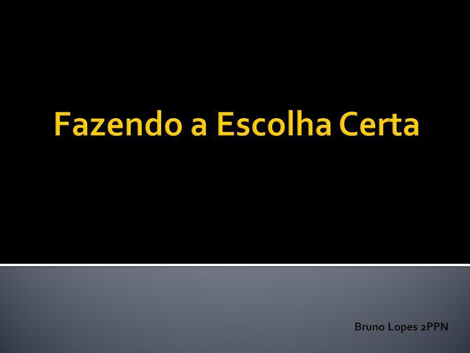 Bruno Lopes 2PPN