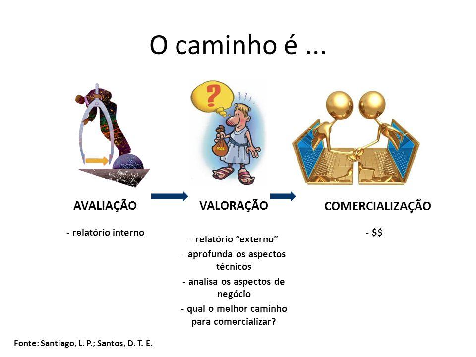 O caminho é... AVALIAÇÃOVALORAÇÃO COMERCIALIZAÇÃO - relatório interno - relatório externo - aprofunda os aspectos técnicos - analisa os aspectos de ne