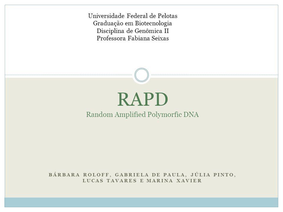 BÁRBARA ROLOFF, GABRIELA DE PAULA, JÚLIA PINTO, LUCAS TAVARES E MARINA XAVIER Universidade Federal de Pelotas Graduação em Biotecnologia Disciplina de