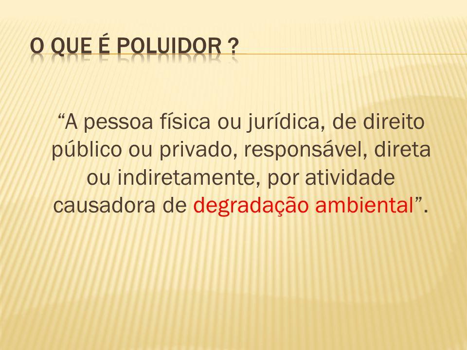 A pessoa física ou jurídica, de direito público ou privado, responsável, direta ou indiretamente, por atividade causadora de degradação ambiental.