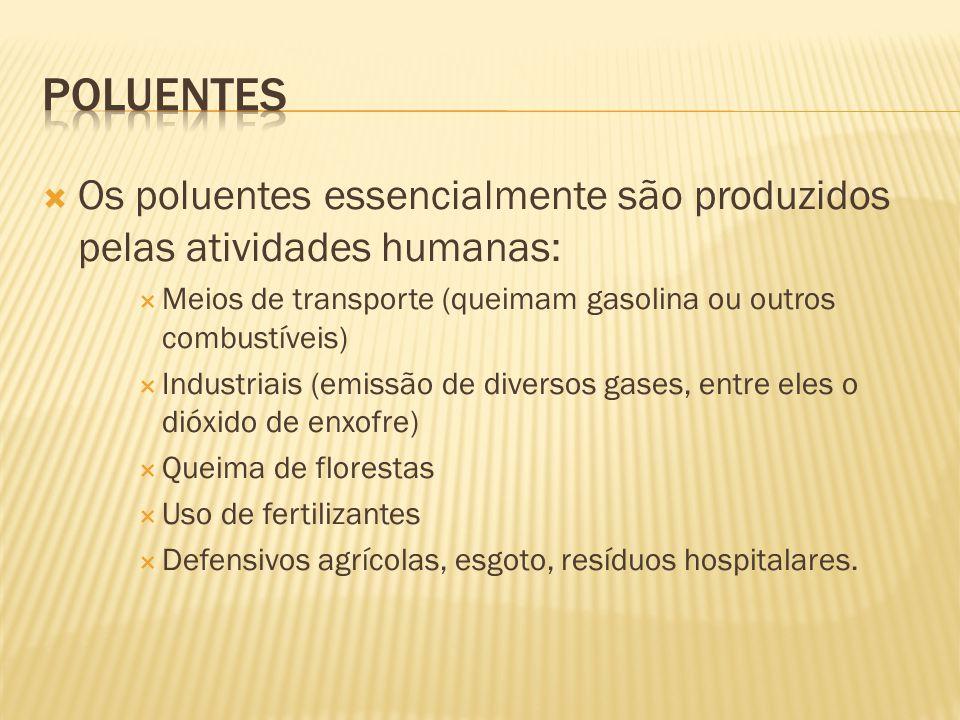 Os poluentes essencialmente são produzidos pelas atividades humanas: Meios de transporte (queimam gasolina ou outros combustíveis) Industriais (emissã