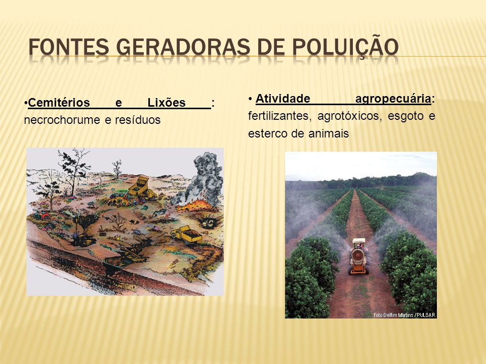 Cemitérios e Lixões : necrochorume e resíduos Atividade agropecuária: fertilizantes, agrotóxicos, esgoto e esterco de animais
