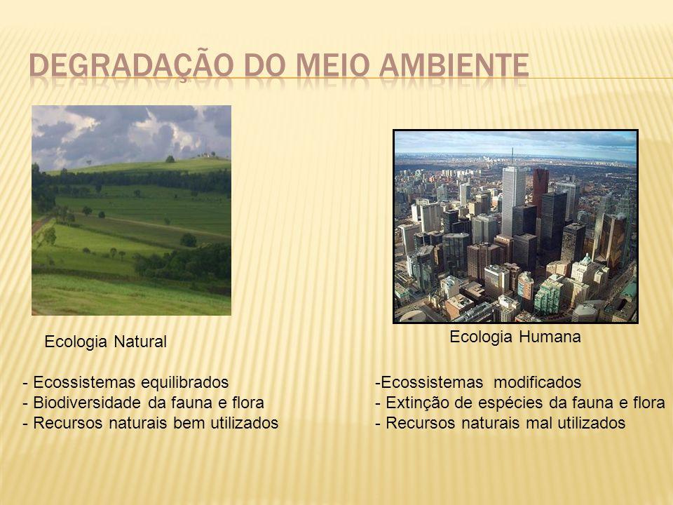 1.Identificar as fontes poluidoras; 2. Associar poluentes às fontes poluidoras; 3.