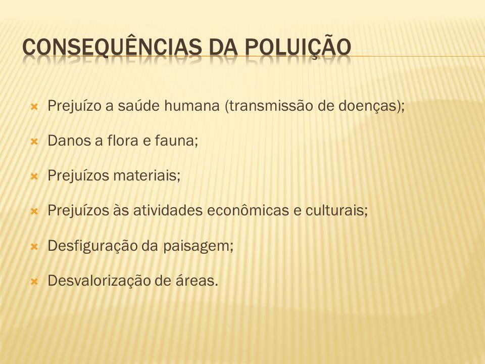 Prejuízo a saúde humana (transmissão de doenças); Danos a flora e fauna; Prejuízos materiais; Prejuízos às atividades econômicas e culturais; Desfigur
