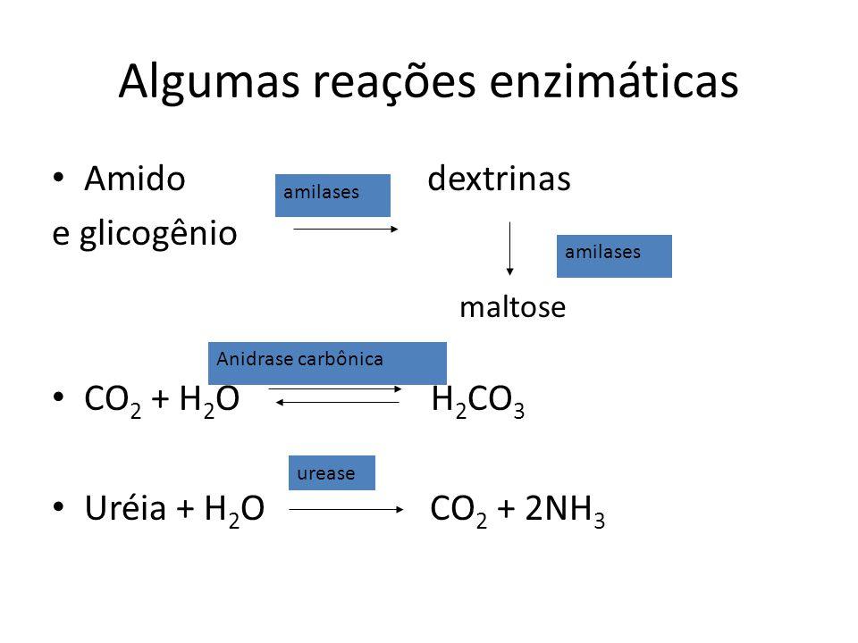 Algumas reações enzimáticas Amido dextrinas e glicogênio CO 2 + H 2 O H 2 CO 3 Uréia + H 2 O CO 2 + 2NH 3 maltose urease amilases Anidrase carbônica a