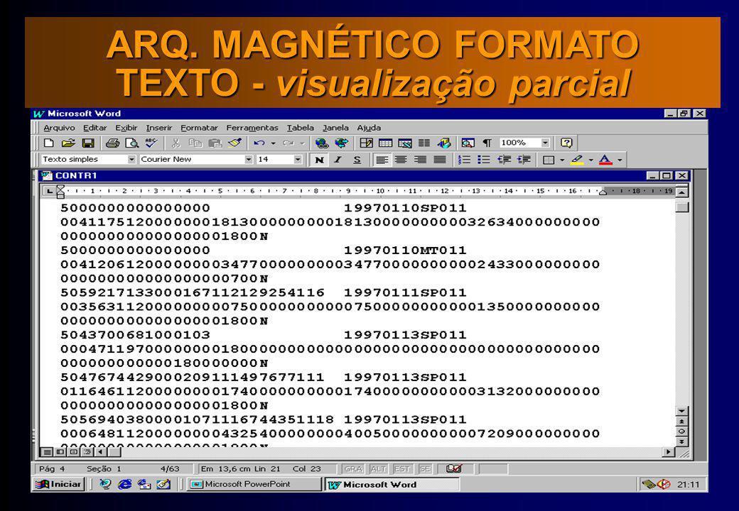 ARQ. MAGNÉTICO FORMATO TEXTO - visualização parcial