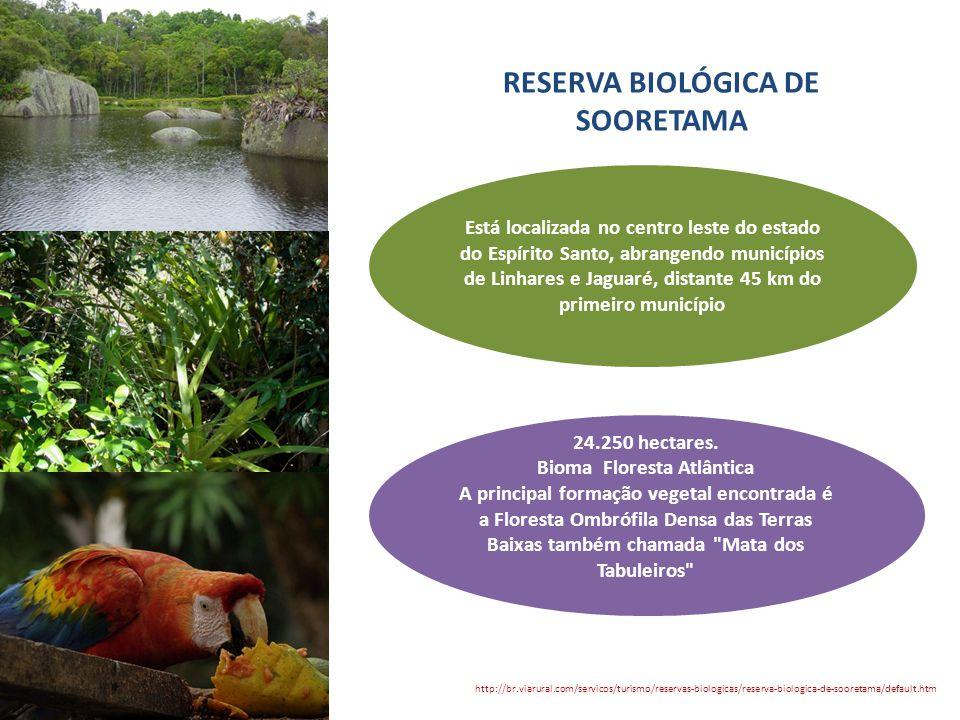 RESERVA BIOLÓGICA DE SOORETAMA http://br.viarural.com/servicos/turismo/reservas-biologicas/reserva-biologica-de-sooretama/default.htm Está localizada