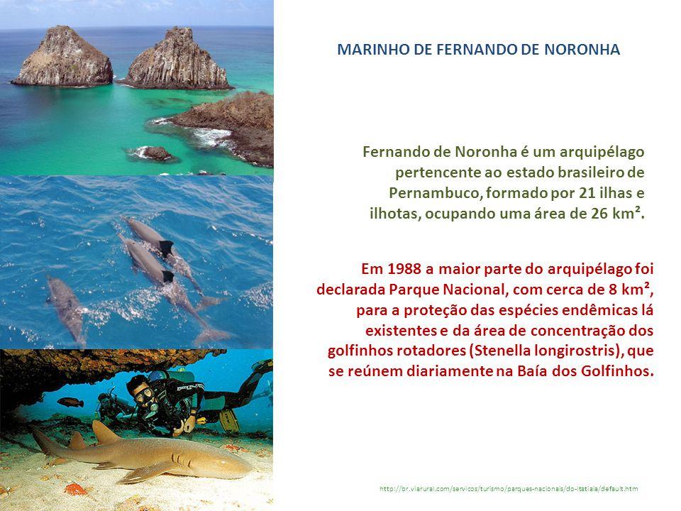 MARINHO DE FERNANDO DE NORONHA http://br.viarural.com/servicos/turismo/parques-nacionais/do-itatiaia/default.htm Fernando de Noronha é um arquipélago