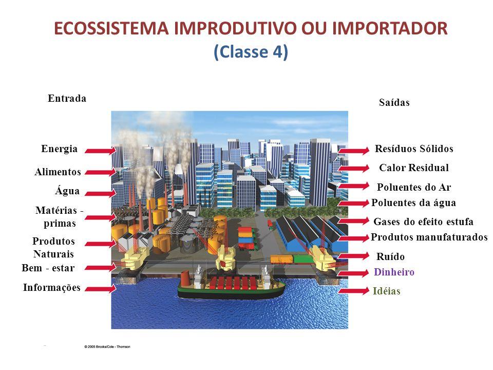 ECOSSISTEMA IMPRODUTIVO OU IMPORTADOR (Classe 4) Figura 7.17 Entrada Saídas Poluentes do Ar Poluentes da água Gases do efeito estufa Produtos manufatu