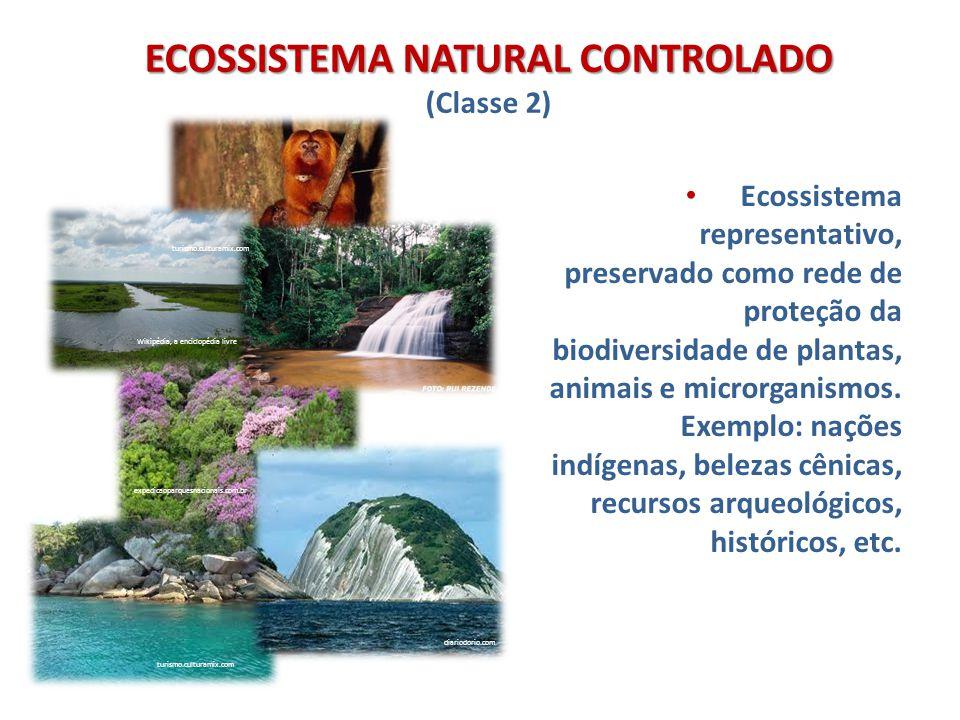 ECOSSISTEMA NATURAL CONTROLADO ECOSSISTEMA NATURAL CONTROLADO (Classe 2) Ecossistema representativo, preservado como rede de proteção da biodiversidad