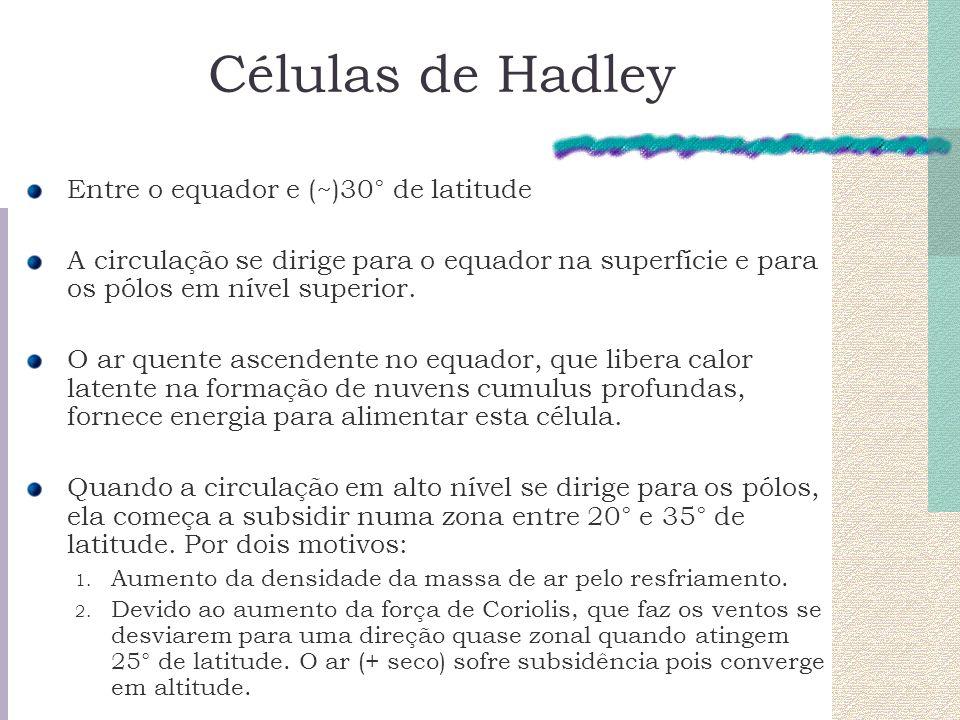 Células de Hadley Entre o equador e (~)30° de latitude A circulação se dirige para o equador na superfície e para os pólos em nível superior. O ar que