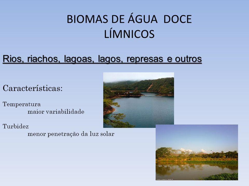 BIOMAS DE ÁGUA DOCE LÍMNICOS Rios, riachos, lagoas, lagos, represas e outros Características: Temperatura maior variabilidade Turbidez menor penetraçã