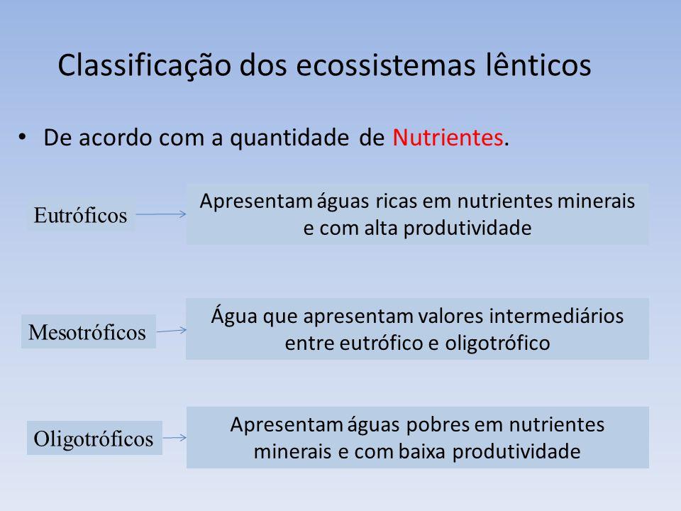 Classificação dos ecossistemas lênticos De acordo com a quantidade de Nutrientes. Eutróficos Mesotróficos Oligotróficos Apresentam águas ricas em nutr